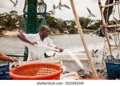 African American fisherman sorting catch on the deck of a fishing boat.