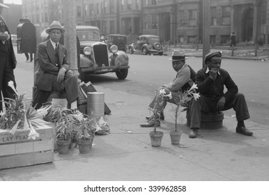 African American lily vendors on Easter Sunday, Chicago, Illinois. April 1941