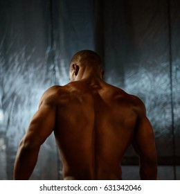 African american male body builder posing on a studio background. Back view