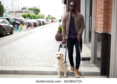 african blind guy with dog guide walking outdoors, handsome guy in dark eyeglasses hold cane for disabled and dog on leash