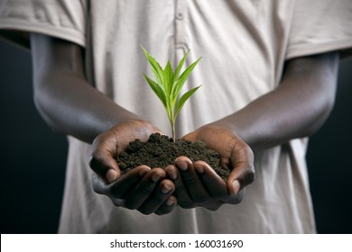 African boy with seedling in his hands