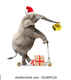 African elephant as a Santa Claus driving a push scooter and delivering Christmas gifts for all.