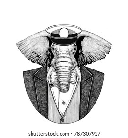 African or indian Elephant Animal wearing jacket with bow-tie and capitan's peaked cap Elegant sailor, navy, capitan, pirate. Image for tattoo, t-shirt, emblem, badge, logo, patches