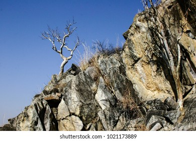 african landscape with high rocks and tree against blue skie