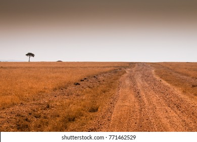 African landscape in Masai Mara Kenya