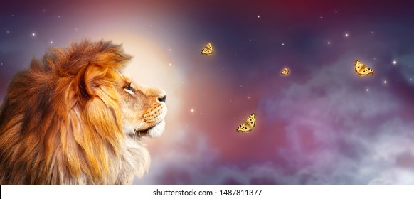 African lion and night savannah in Africa. Moonlight landscape with flying butterflies, king of animals. Proud dreaming fantasy lion in savanna looking on stars. Majestic dramatic starry sky banner.