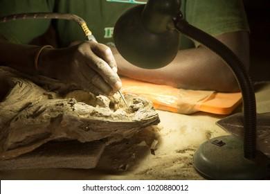 African Paleontologist at Work