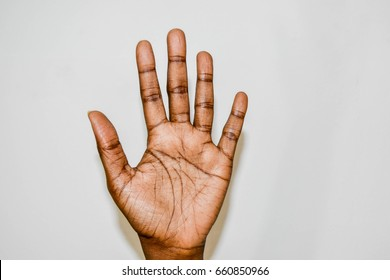 African palm and fingers