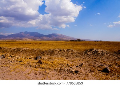 african savannah landscape with high mountains and yellow colored grassland in the african national park serengeti in tanzania