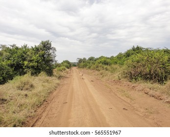 African savannah landscape. Wild nature of Eastern Africa. Flora and fauna of Kenya