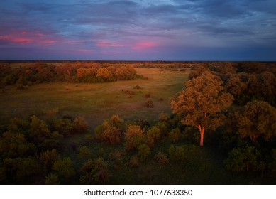 African sunset, atmospheric view from above on trees of Moremi forest, Botswana. Typical ecosystem, part of Okavango delta, aerial photography. Vast wilderness without people, animal paradise.Africa.