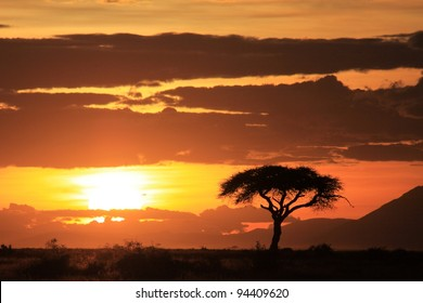 African sunset on the savanna plains
