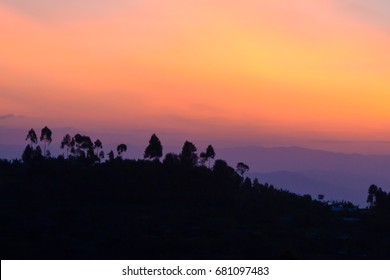 African sunset  with silhouettes of palms and bright orange, magenta colors, nature background, Rwanda
