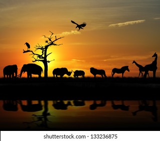 African Wild Animals Silhouettes Against A Sunset
