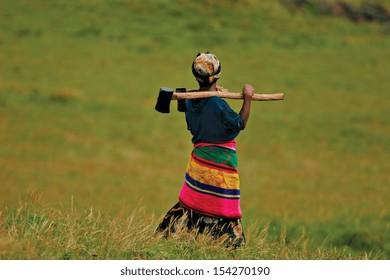 An African woman carries an axe in a field.