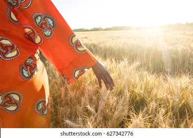 African woman in traditional clothes walking with her hand touching field of barley or wheat crops at sunset or sunrise