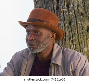 An African-American man with a hat, sitting under a palm tree in the Venice park