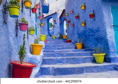 Africa,North Africa,Morocco, Chefchaouen or Chaouen  is most  noted for its small narrow streets and neighborhoods painted in vivid blue colors. Plantings in colorful pots line the narrow corridors.