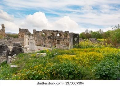 Afrodisias Ancient City, Karacasu - Aydin - Turkey