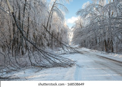 The after effects of an ice storm in winter.