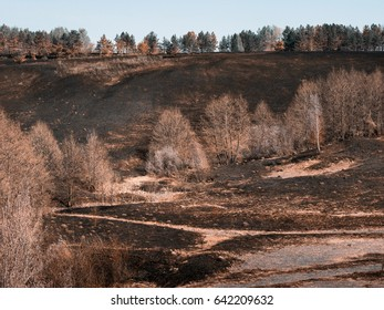 After a fire.Spring.Dry grass and plowed land.Country style.Background.