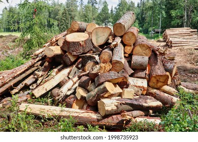 After forest cutting extra trees collected in the stack