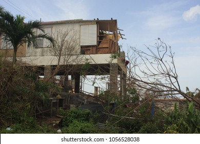 After Hurricane Maria