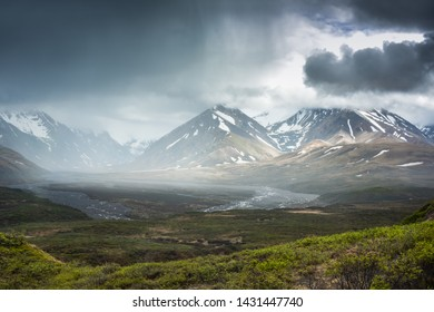 After rain in Denali National Park