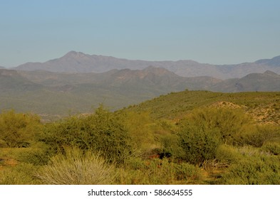 After an unusually heavy winter rain, McDowell Mountain Regional Park glistens in a new shade of freshened green, looking full and lush.
