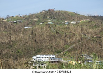 Aftermath of hurricane Maria on the mountains of the island of Puerto Rico