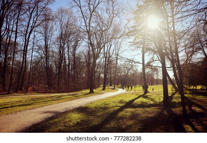 afternoon backlight in a sunny December day at Englischer Garten in Munich, people stroll in relax