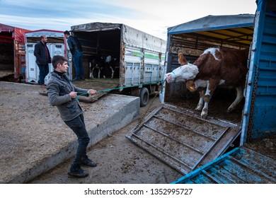 AFYONKARAHISAR,TURKEY,FEBRUARY 6,2019: View from Cayirbag domestic animal husbandry market near Afyonkarahisar. Afyonkarahisar is a city in western Turkey, the capital of Afyon Province.