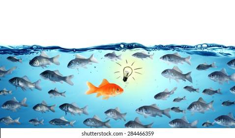 against the stream innovation concept - goldfish