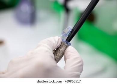 Agarose gel electrophoresis is a method of gel electrophoresis used in biochemistry, molecular biology, genetics, and clinical chemistry in lab.