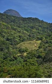 Agasthyarkoodam Peak - Second highest peak in Kerala.