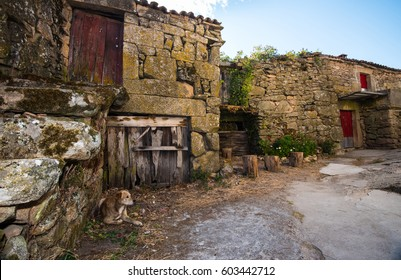 aged characteristic farm house in little village in Galicia, northern Spain, with dog at high noon.