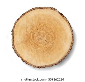 Aged cracked wooden tree section with rings and texture isolated on white. Circular background with an organic feel.
