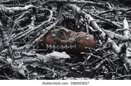 Aged, Deflated Football Covered in Woods