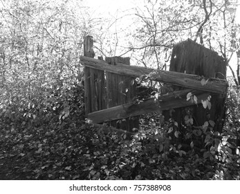 Aged Gate with Natural Background in Black and White. Option 2. Countryside exploration. Life on the Farm.