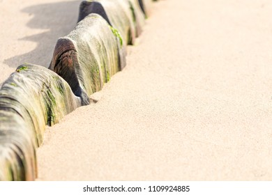Aged timber exposed on a deserted beach. Lots of space for text