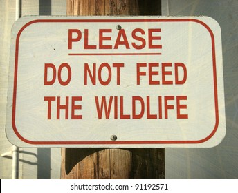 aged and worn vintage do not feed wildlife sign