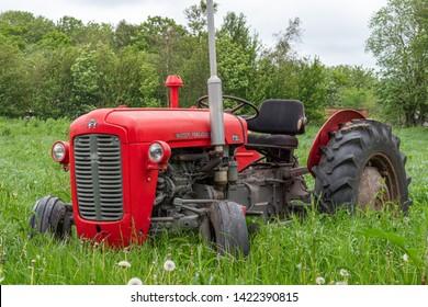 Agerskov, Denmark - June 1, 2019: Beautiful old red Massey Ferguson 35 tractor parked in high grass on a field in Jutland, Denmark