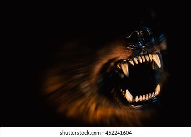 Aggressive animal