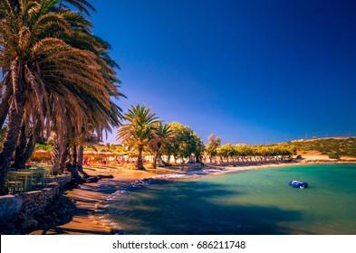 Agia Irini beach, Paros island, Greece. Beautiful Greek beach with palms in Cyclades Islands