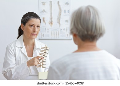 Aging and back pain concept: doctor of orthopedics showing her senior patient a slipped disk on a backbone model.
