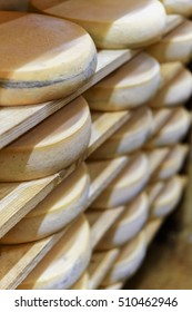 Aging Gruyere de Comte Cheese on wooden shelves at maturing cellar of Franche Comte dairy in France