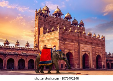 Agra, India - April 09, 2018: Decorated Indian elephant in front of Buland Darwaza Fatehpur Sikri Agra at sunset.