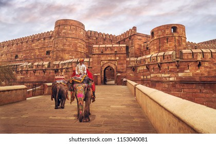 Agra, India, February 13, 2018: Indian decorated elephants at Agra fort entrance gateway.
