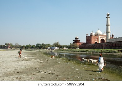 AGRA, INDIA - MARCH 05, 2006: Children and women with goats and view the Taj Mahal from the Yamuna river