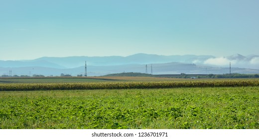 Agrarian fields with misty mountains in the backround in the Transylvanian countryside, Romania